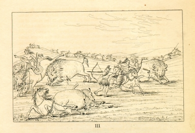 [Buffalo chase, bulls making battle with men and horses, Letters and Notes on the Manners, Customs, and Condition of the North American Indians.]