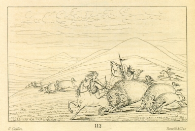 [Buffalo chase, bull protecting cow and calf, Letters and Notes on the Manners, Customs, and Condition of the North American Indians.]
