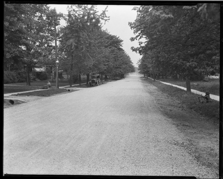 Street Improvement Photographs -- Box 32, Folder 43 (Cedar Avenue) -- negative, 1930