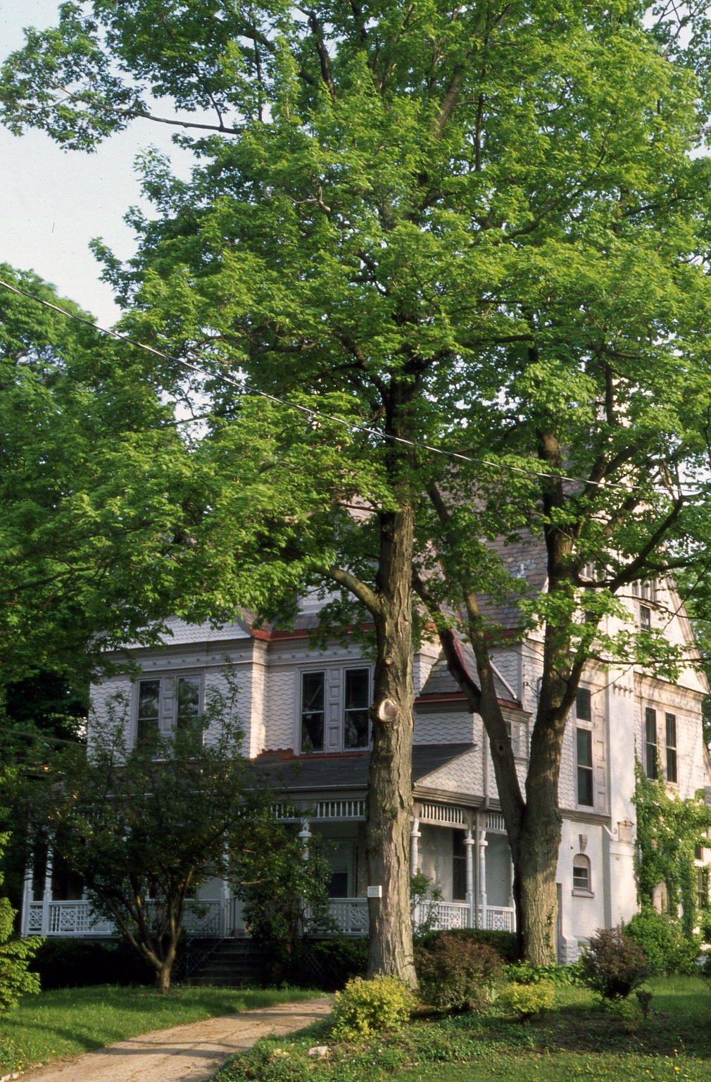 1839 Madison Road