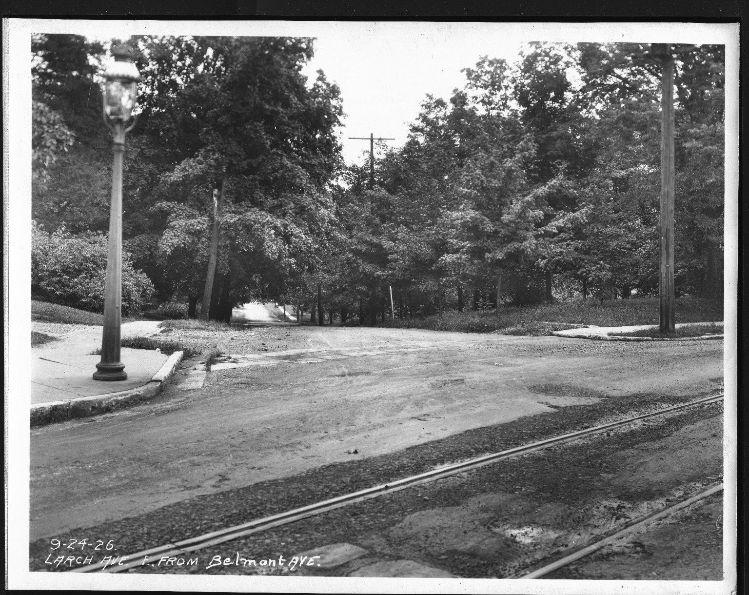 Street Improvement Photographs -- Box 25, Folder 42 (Larch Avenue) -- print, 1926-09-24