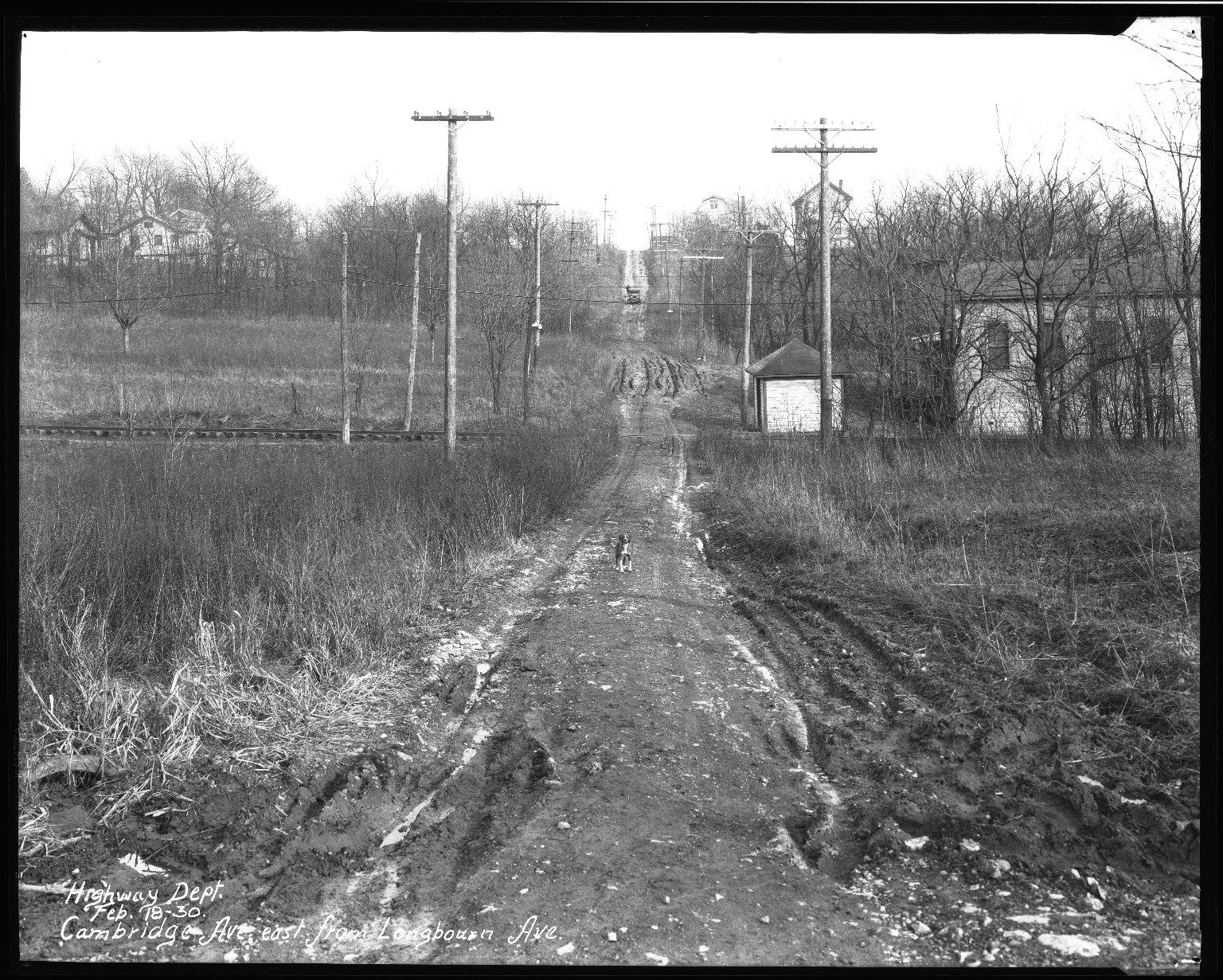 Street Improvement Photographs -- Box 32, Folder 36 (Cambridge Avenue) -- negative, 1930-02-28