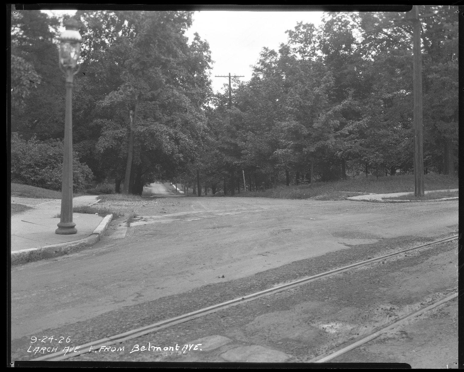 Street Improvement Photographs -- Box 38, Folder 38 (Larch Avenue) -- negative, 1926-09-24