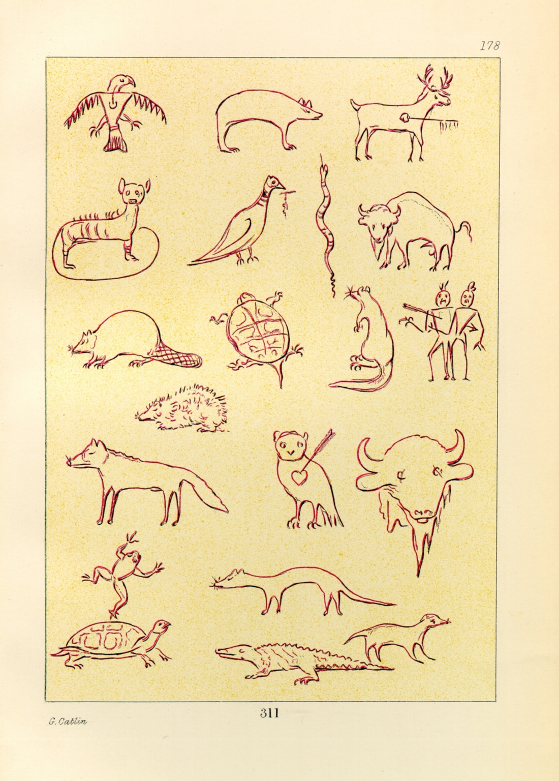 Animal Figures in Picture-Writing
